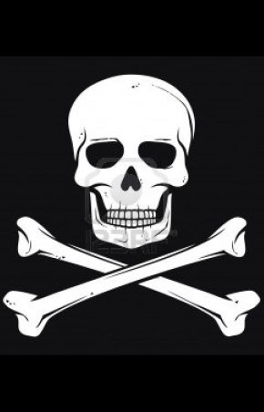 14836330-pirate-flag-jolly-roger-pirate-flag-with-skull-and-cross-bones
